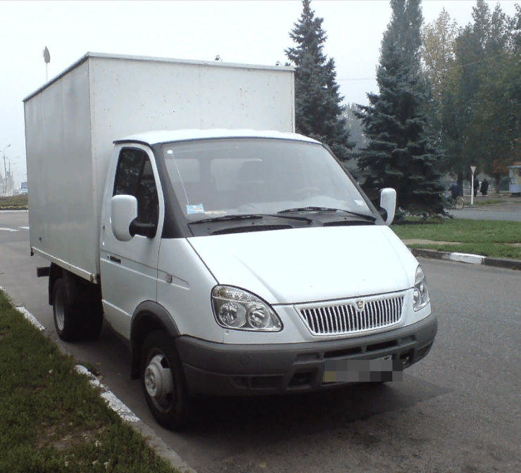 Газель Черноголовка